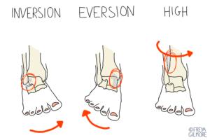 The three main ankle sprains