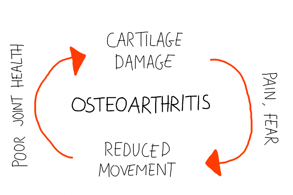 The role pain plays in the development of osteoarthritis